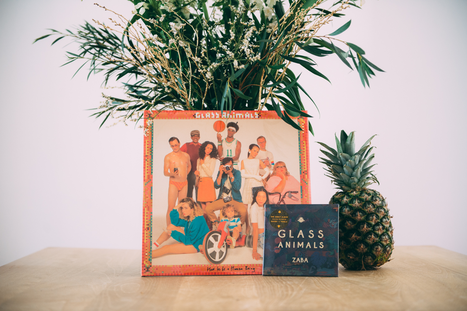 Glass Animals-1